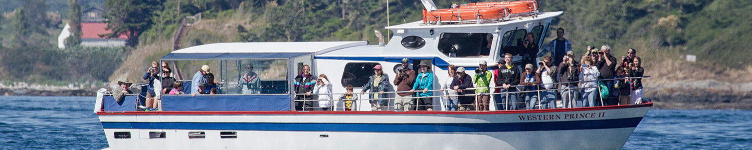 Friday Harbor Seaplanes | Western Prince Whale & Wildlife Tours